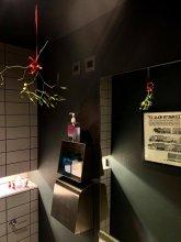 Mistletoe at the klinik toilet